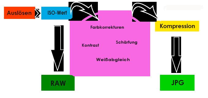 RAW-Format und JPG-Format in der Entwicklung