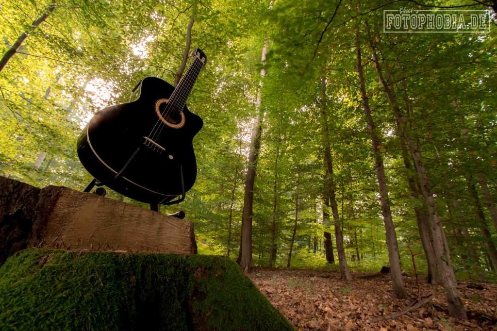 Fotografie von einer Gitarre im Wald. Thema Waldgeräusche